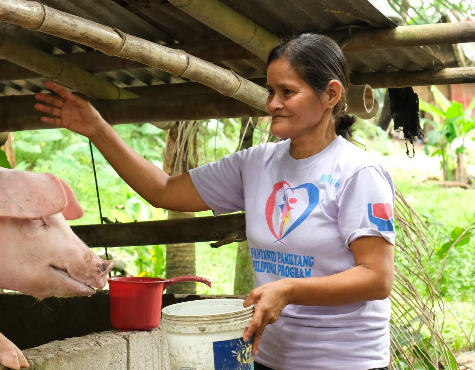 Corazon feeding a pig
